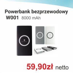 Powerbank W001